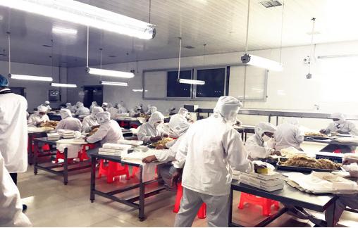 山东麦品客有限公司-德远塑业定制案例